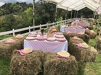 Decoración fiesta de granja para niñas_1.JPG