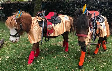 Alquiler de ponis Bogotá