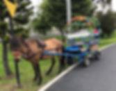 Alquiler de carreta con ponis
