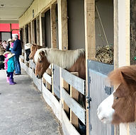 Sitios para fiestas infantiles Bogotá