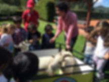 Visitas pedagógicas a jardines y colegios. Bogotá