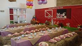 Decoración de granja para fiestas infantiles
