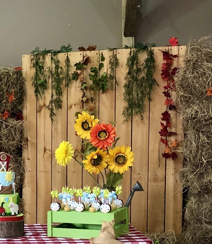 Decoración fiesta granja
