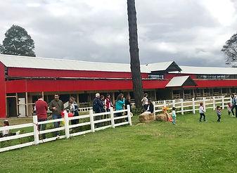 Lugares para fiestas de granja Bogotá