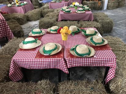Fiesta de granja.HEIC
