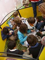 Visitas pedagógicas de granja