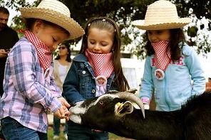 Fiesta de granja.jpg
