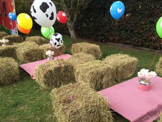 Fiesta picnic bogotá