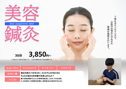 美容鍼_PAGE0001.jpg