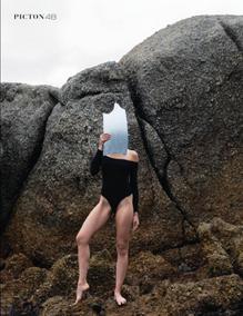 Picton publication 2019