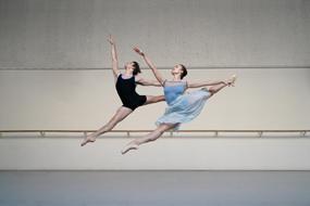 Dutch nationale opera & ballet 2020