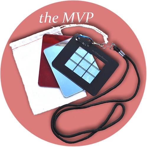 Artist's MVP (Mirror, Value Viewer, Composition Planner