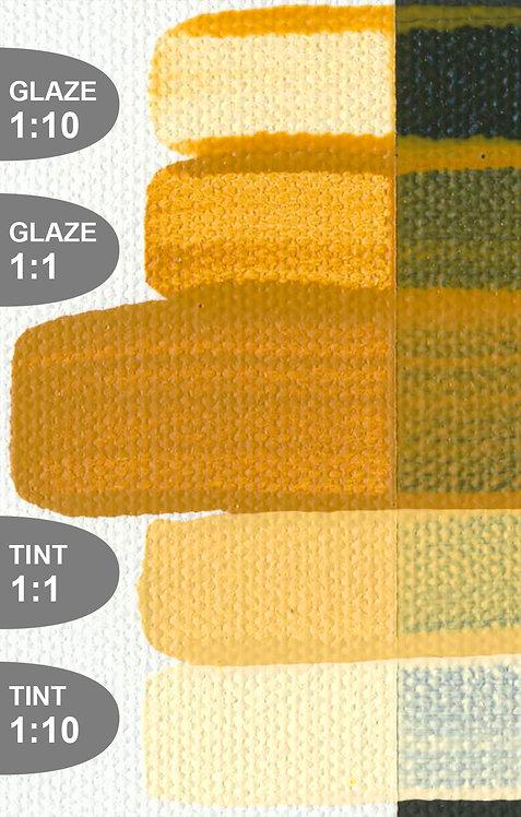 Earth Tones (Golden Fluid Acrylics)