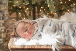 Newborn-3523