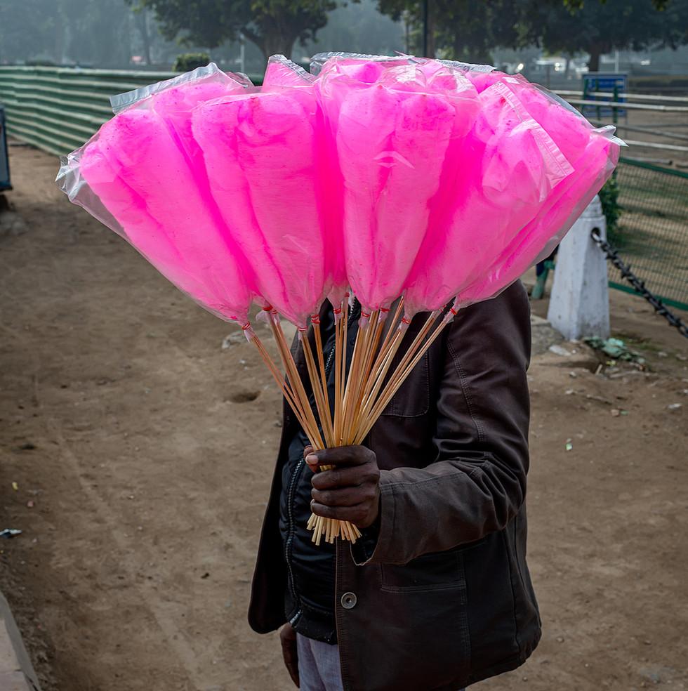 0142_Delhi-Pink-Candyfloss_COL_17-x-22.j