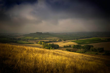 1123_Tuscany landscape_COL_22 x 17.jpg