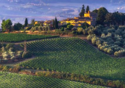 0956_Tuscany*Landscape_COL_22 x 17.jpg