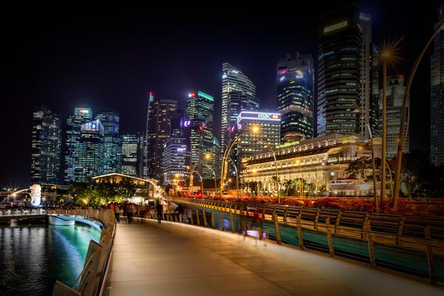 6576_Singapore_Lights_COL_22 x 17.jpg