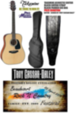Pro music - signed guitar.jpg