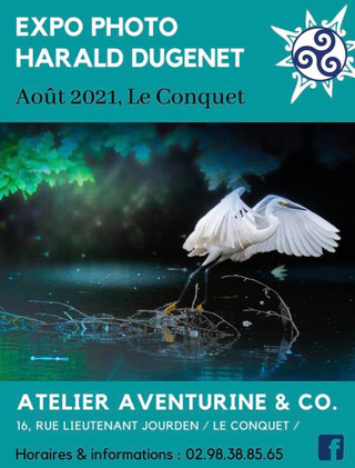 Au Conquet - Expo Photo - août 2021