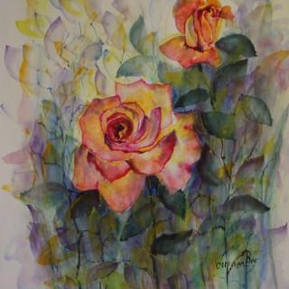 Aquarelle 2 roses 70x50