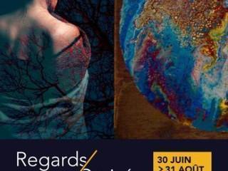 à Pleyber-Christ - Exposition salle Anne de Bretagne - du 30 juin au 31 août 2019