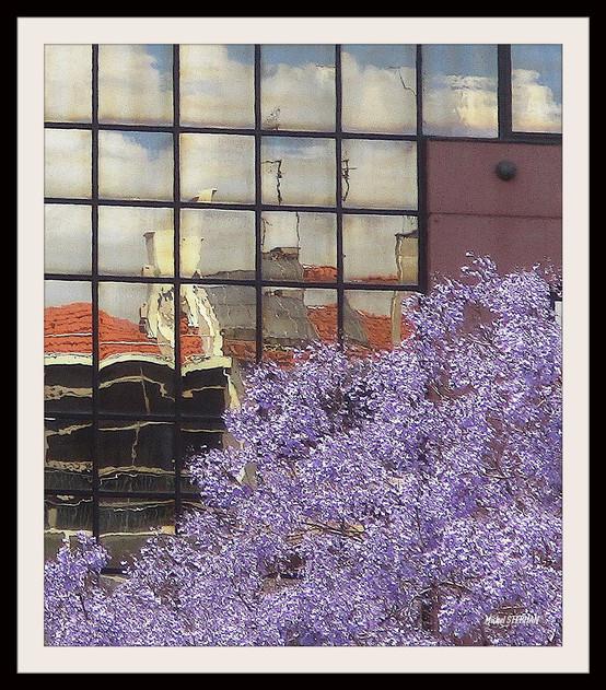 Reflets de Libonne Portugal