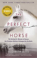 Perfect Horse.jpg