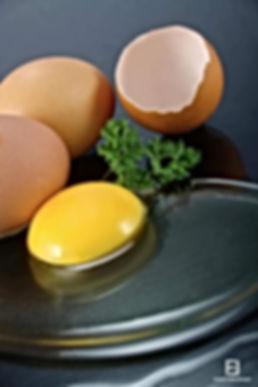 Hypno-nutrition 27, c'est maigrir efficacement, avec l'hypnose,la nutrition avec l'aide de Laurette Perrotte, Hypno-nutritionniste certifiée, et située à Pont-Audemer(eure 27) en Normandie.