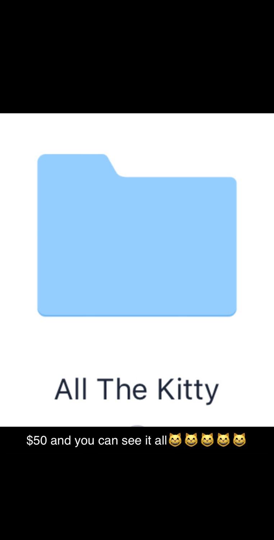 All The Kitty Folder
