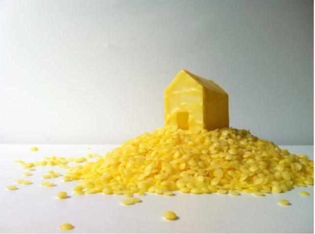 """Camila Salame, """"Maison pour rêver"""", 2013, Cire d'abeille, Dimensions variables"""