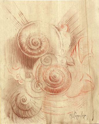 Snail spirals