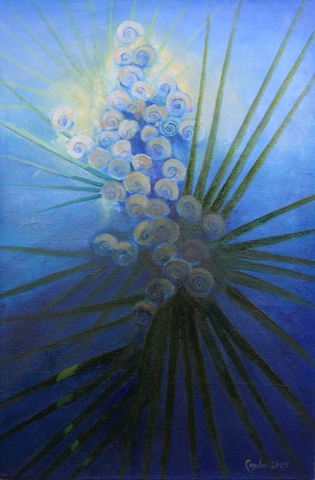 Land snails on palmetto