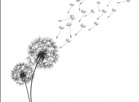 Le deuil : un chapitre du livre de nos vies