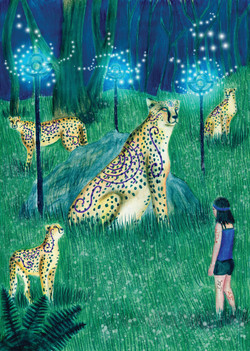 noche de luz guepardos cMYK