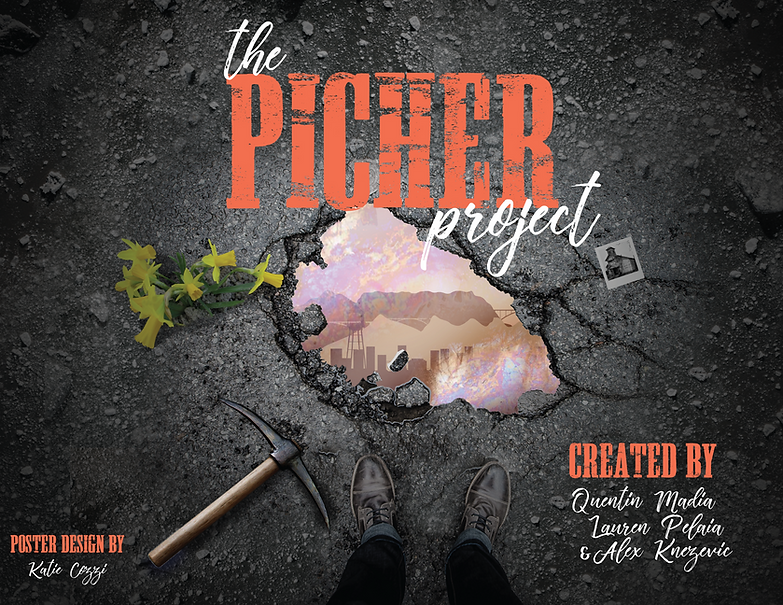 PIcher-Project_11x8.png