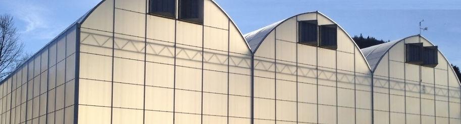 3 greenhouses.jpg