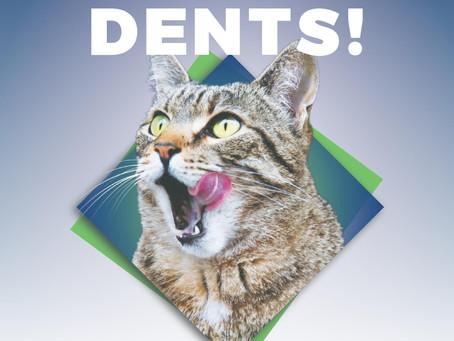 Février - Mois de la Santé Dentaire