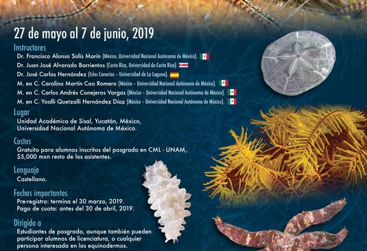 cartel_curso-equinodermos_2019_final_web