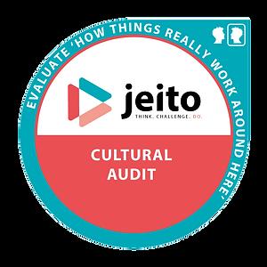 Cultural-Audit.png