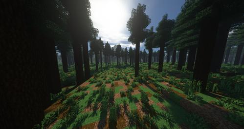 Azure's Wild Forest.