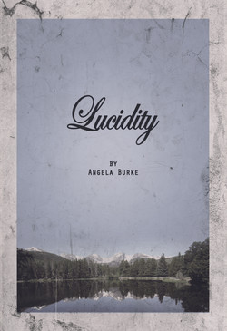 LUCIDITY_BOOK_COVER