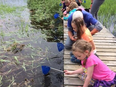 Grade 2 Wetlands Field Trip
