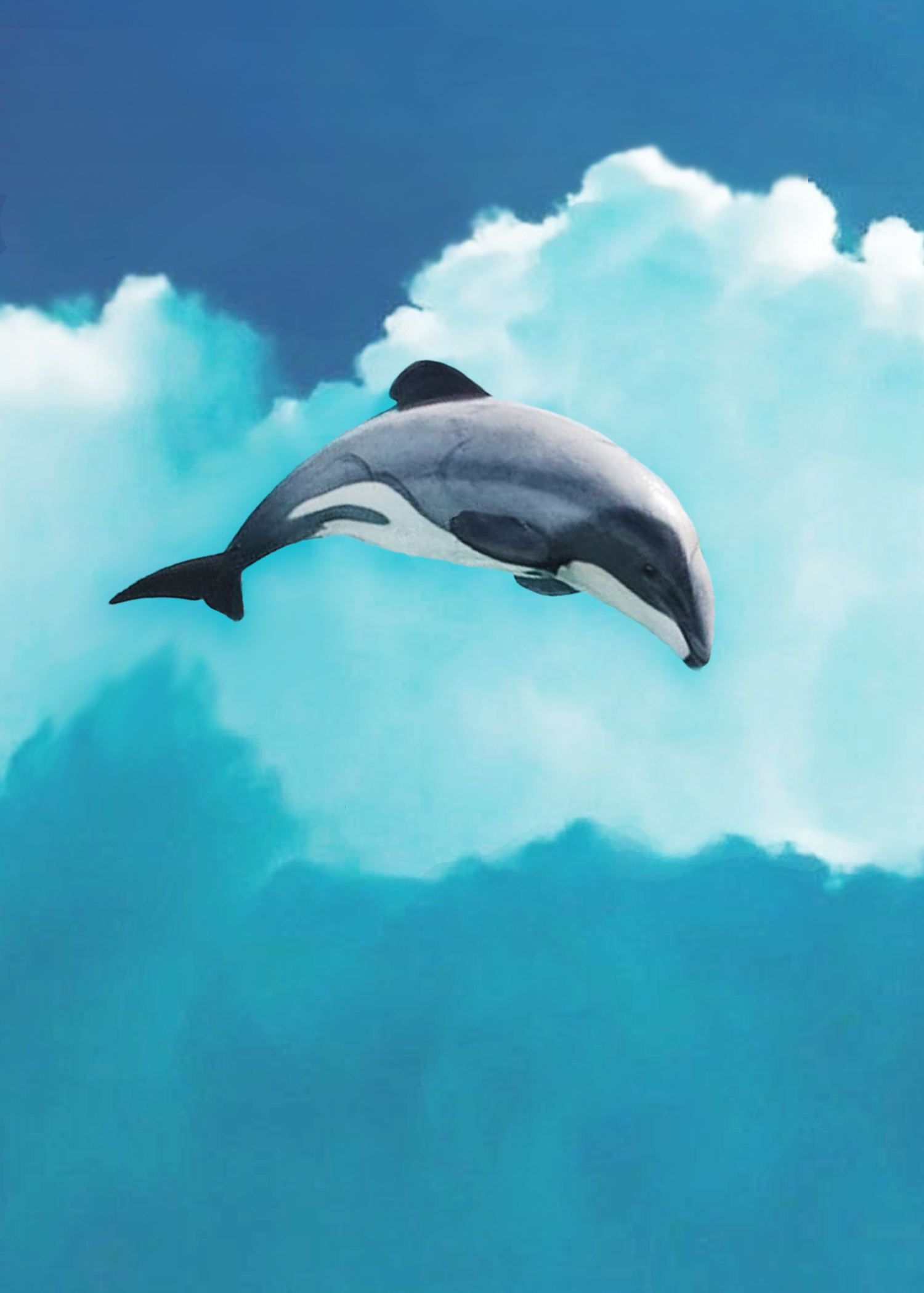 CENERINI Cessation (Maui Dolphin) 2014.j