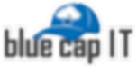 Blue Cap IT - Information Technology Consulting and Services