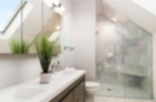 Wyandanch master bath small by pro.jpg