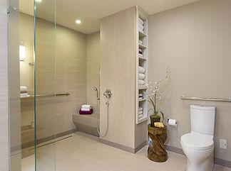 Universal Design bathroom, porcelain tiles, curbless walk  in shower, hand held shower, grab bars, raised toilet Hamptons Universal Design