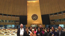 Woodenfish Gains Special Consultative Status with United Nations' ECOSOC