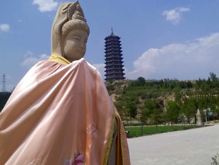 Interested in going to China this Fall? Woodenfish's new WISE Program may be just what you are l