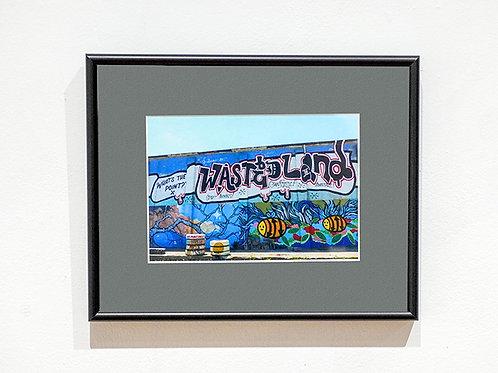 """""""Waste Land"""" framed photograph"""